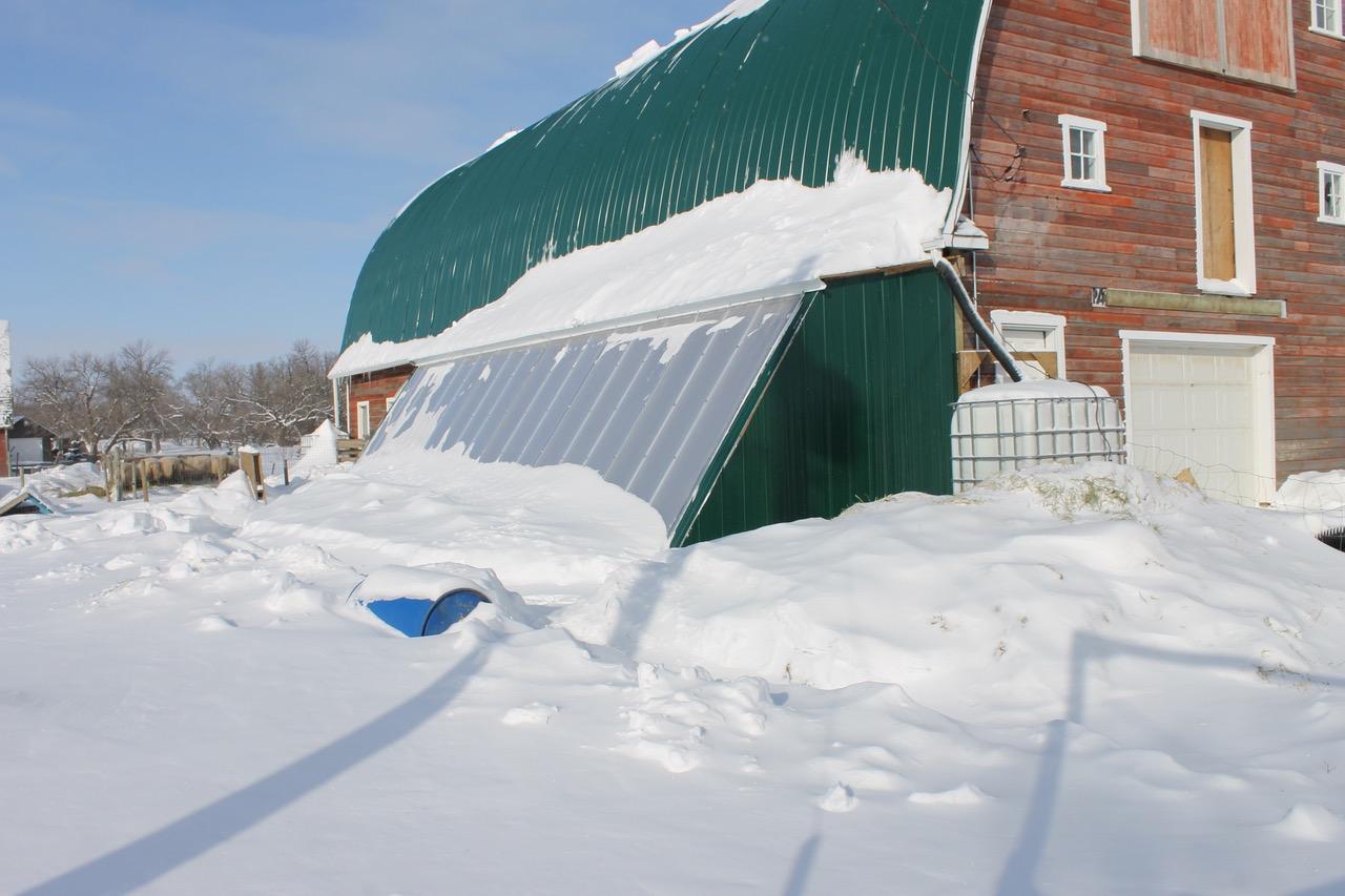 DIY Dreams Meet Practical Realities: Passive Solar Greenhouse Design